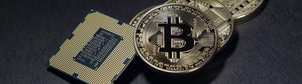 Litecoins or bitcoins magic millions guineas bettingadvice
